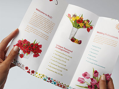 Pictures of flowers for flowershop brochure
